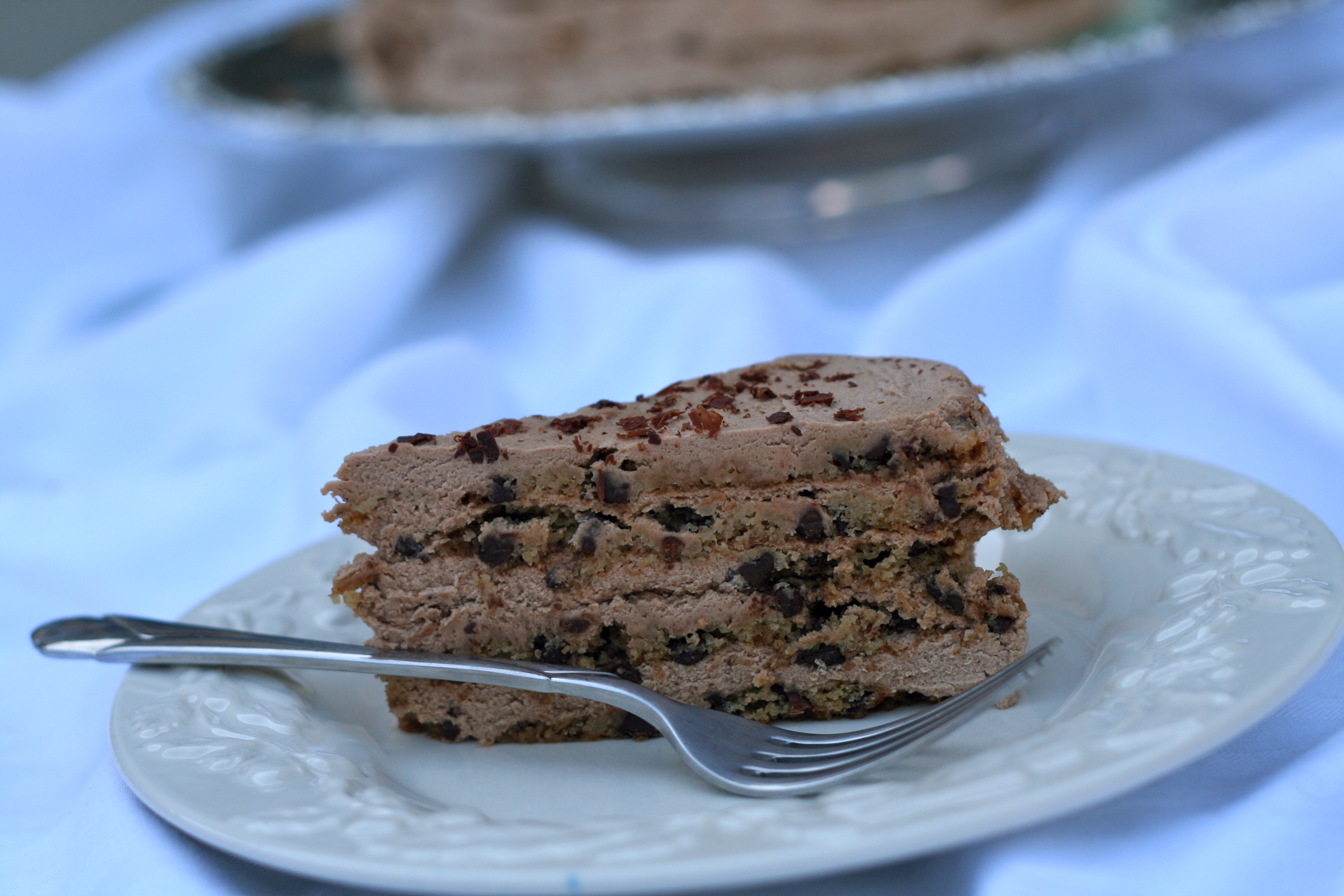 Mocha Meringue Cake Chocolate And Coffee With Cream Filling And